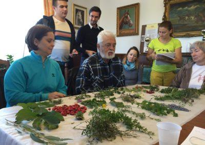 2016 őszi gyógynövényismereti tábor