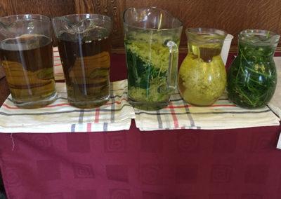 2017 koranyár Atilla domb  - a magunk szedte gyógynövények teájának kóstolásával is jár