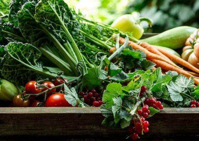 Színes zöldségek
